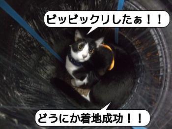 20090409_162100.jpg
