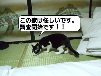 20090704_015856.jpg