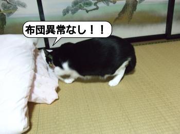 20090704_021206.jpg