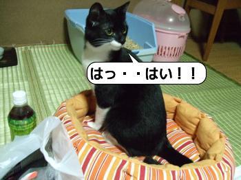 20090704_022305.jpg