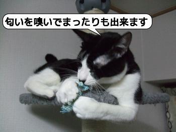 20090810_071437.jpg