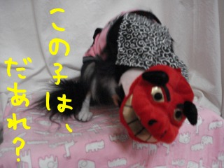 DSC06096.jpg