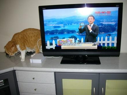小さいテレビ)