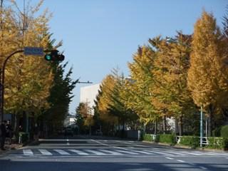 渋谷区役所前