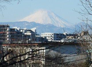 富士山 1.11
