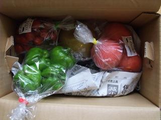 野菜ボックス 1