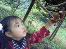 2008-11-15-3.jpg