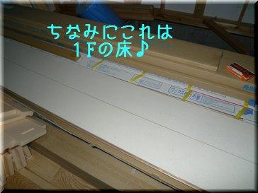 P1000542.jpg