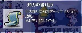 知力目100