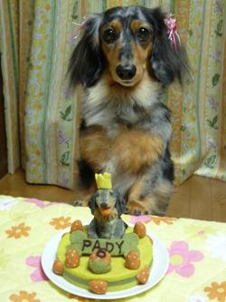 パディ&ケーキ
