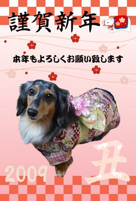 年賀状ぱーちんブログ用