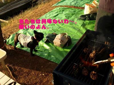 20081004_53.jpg