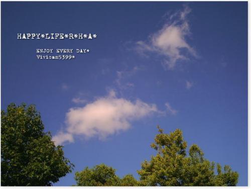 20080823b.jpg