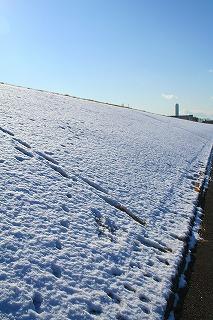 まだ・・こんなに雪が残ってるぅ。