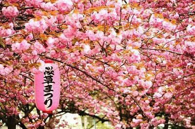 里桜2012☆★