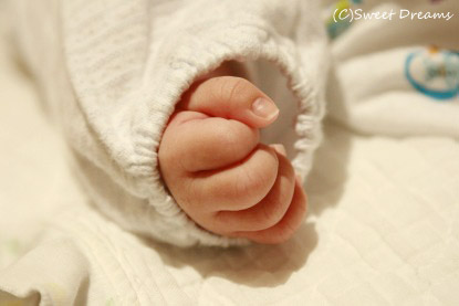 赤ちゃんの手♪