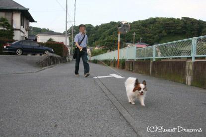 夕暮れ散歩♪