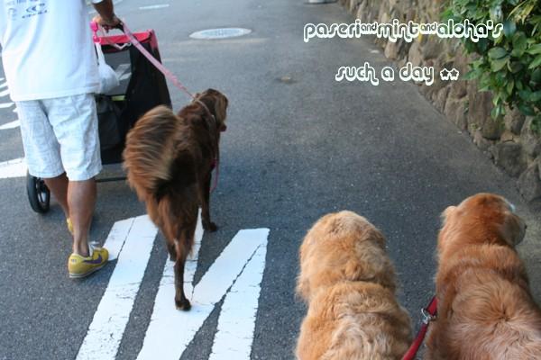 0907 朝散歩2