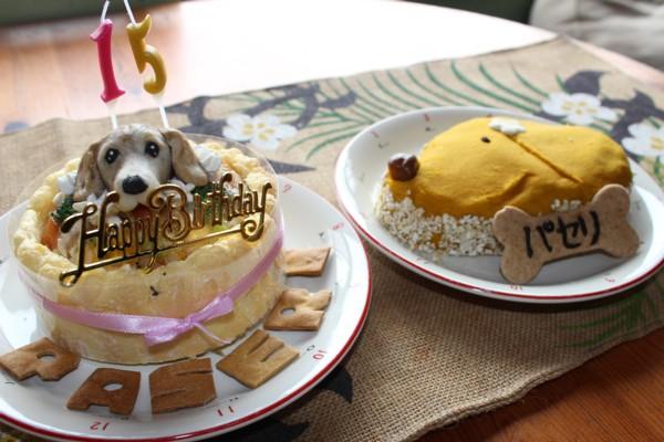 0410 ケーキ