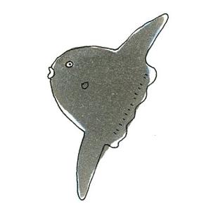 20080616-2.jpg