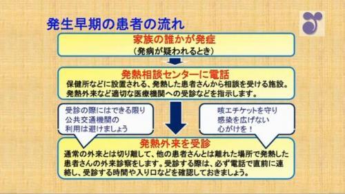 influenza4.jpg