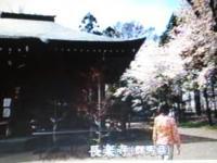世界・ふしぎ発見 長楽寺2