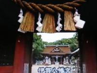 世界・ふしぎ発見 伊賀八幡宮