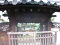 世界・ふしぎ発見 本徳寺