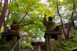 kimura25WM.jpg