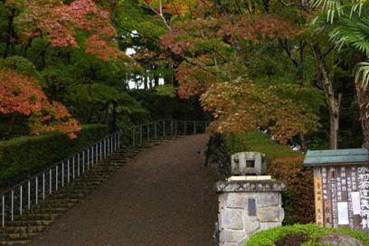 kimura6WM.jpg