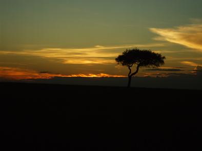 ケニア夜景