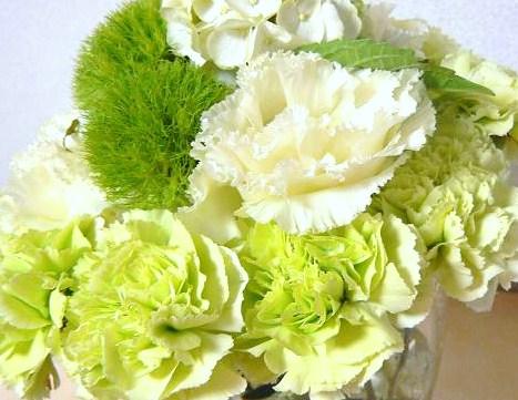 Flower062608.jpg