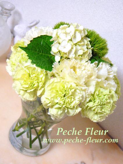 Flower625082.jpg