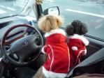 20111225クリスマス-1