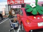 20120213いちご狩り (40)-1