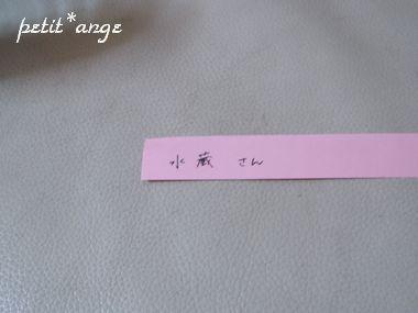 P4130978.jpg