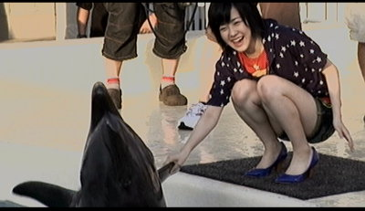 イルカと握手佐紀ちゃん。