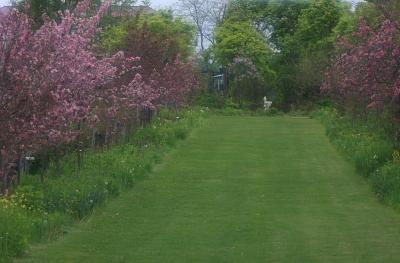 garden802