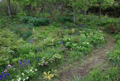 garden804