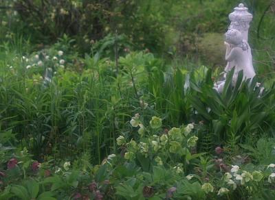 garden808