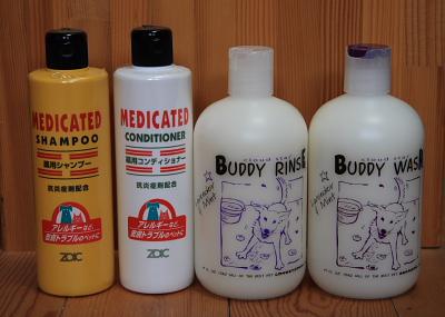 shampoo813