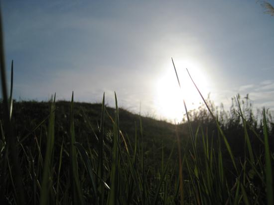 田舎へ行こう:丘の写真
