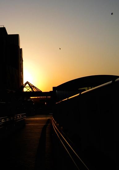 気持ちのいい日:朝の写真3
