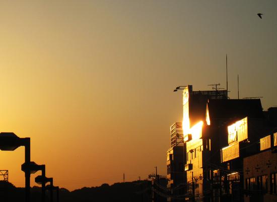 気持ちのいい日:朝の写真5