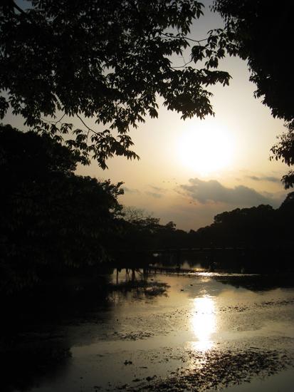 奈良公園の浮見堂5