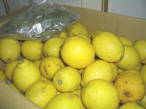レモン宅急便