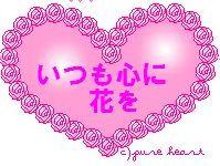 stv1_20090307164504.jpg