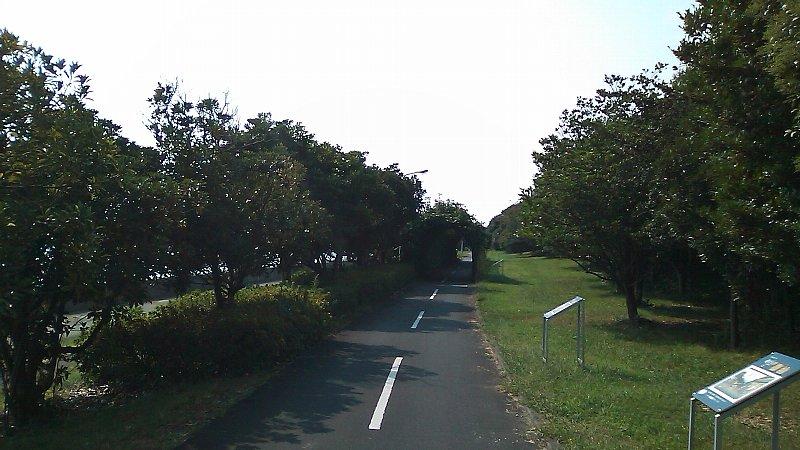 SN3I0095.jpg