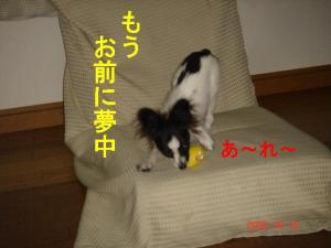 DSC08162.jpg