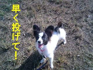 MA320008-0001.jpg